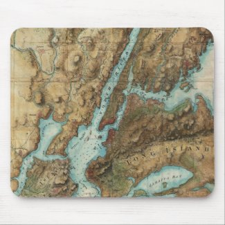 Vintage Map of New York City Harbor (1864) Mouse Pad