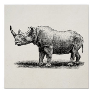 horned rhino art wall