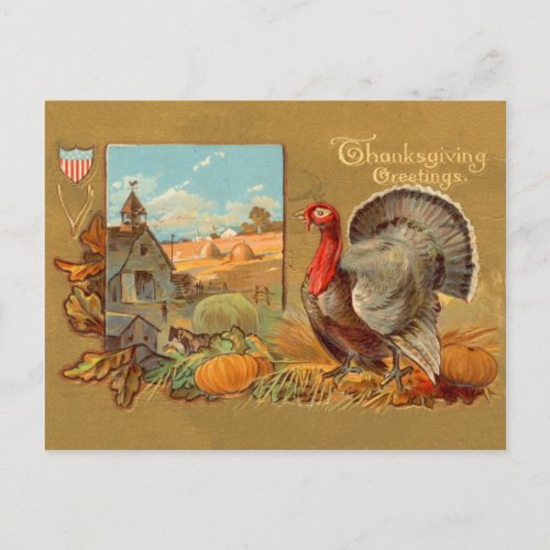 Vintage Thanksgiving Turkey Postcard