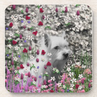 Violet in Flowers – White Westie Beverage Coaster