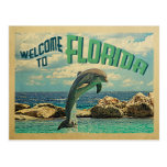 Welcome To Florida Dolphin Vintage Travel Postcard