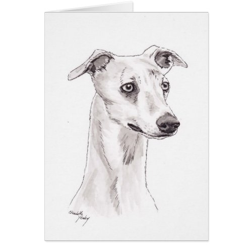 Whippet Dog Art Note Card