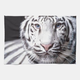 White Bengal Tiger Photography Kitchen Towel