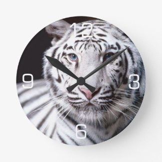 White Bengal Tiger Photography Wallclocks