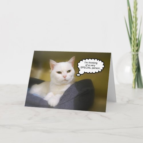 White Cat Birthday Humor Card card