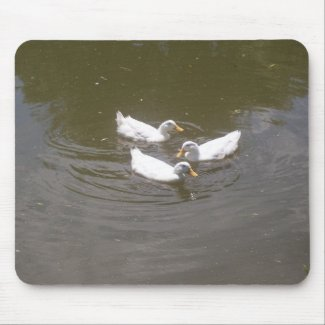 White Ducks Swimming Mousepad mousepad