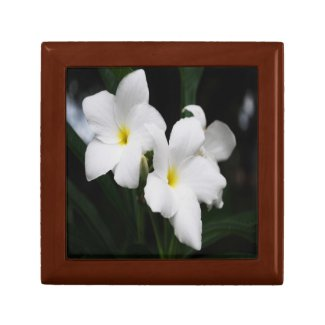 white lily flowers trinket boxes