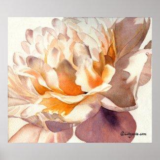 White Peony Watercolor Poster Print print