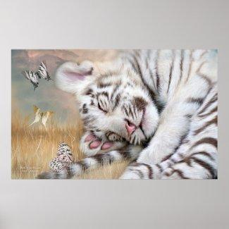 White Tiger Dreams Fine Art Poster/Print
