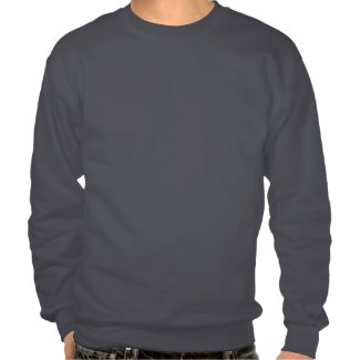 wifi pull over sweatshirt