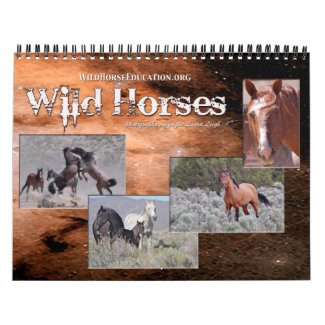 Wild Horse Education ... a calendar