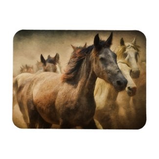 Wild Horses Photo Magnet