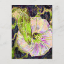 Wild Morning Glory by Alexandra Cook postcards