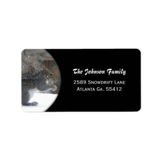 Winter Squirrel Address Labels