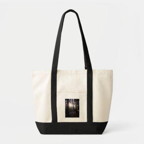 Winter Sunrays #16 bag
