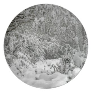 Winter Wonderland Woods in the Snow Photo Plate