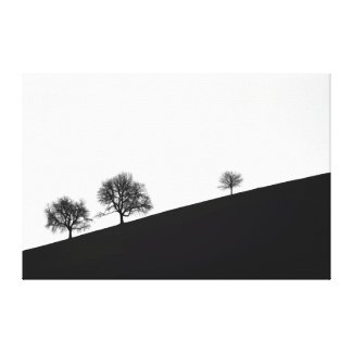 Wrapped Canvas Fine Art B&W 3 Trees on Hill Canvas Print