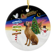 Xmas Signs - Rhodeisn Ridgeback ornament