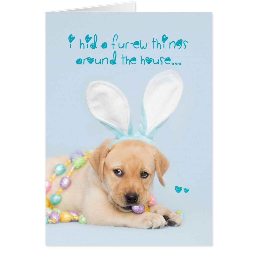 Yellow Lab Puppy Hid a Few things... easter Card