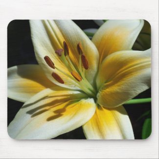 Yellow Lily Mousepad mousepad