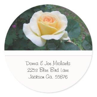 Yellow Rose Address Stickers sticker