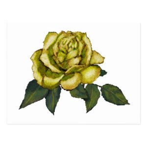 rose flower pencil yellow drawing postcard