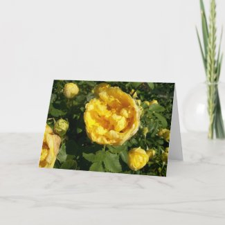 Yellow Roses Card card