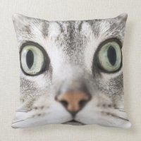 Zoom up of cat face pillows on PopScreen