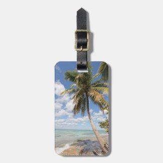 Isla Saona - Palme am Strand Kofferanhängern