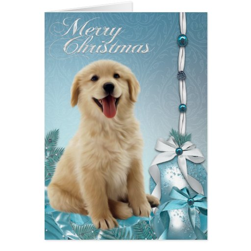 Labrador Golden Retriever Weihnachtskarten Grukarte Zazzle