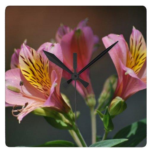 Bedeutung Von Blumen die sprache der blumen bedeutung der