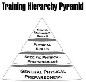 The Three-Dimensional Performance Pyramid Manual (PDF)
