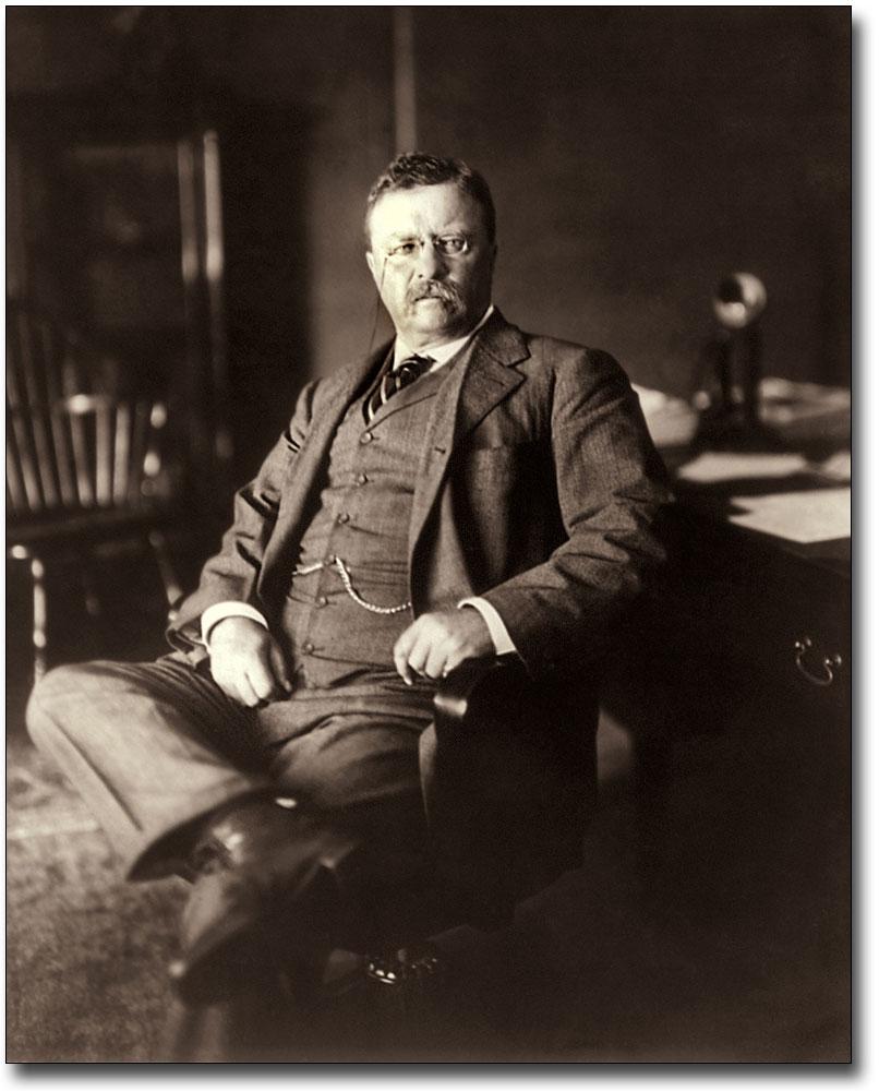 Teddy Roosevelt Portrait : teddy, roosevelt, portrait, PRESIDENT, THEODORE, ROOSEVELT, PORTRAIT, SILVER, HALIDE, PHOTO, PRINT