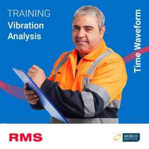 rms training course vibration time waveform analysis