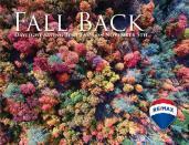 2 - Fall Foliage