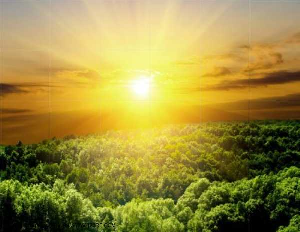 Manfaat Sinar Matahari  REYNALDI