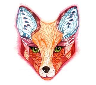 blue fox_1