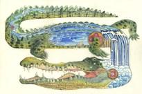 illustration-crocodile