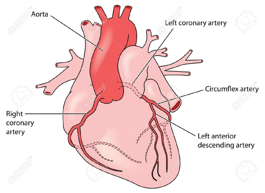 hight resolution of coronaryarteries