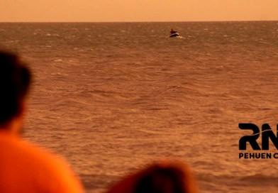 Rescate de 2 tripulantes de bote perdido en el mar