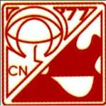 Critical Care Nurses Association of the Philippines, Inc. (CCNAPI)