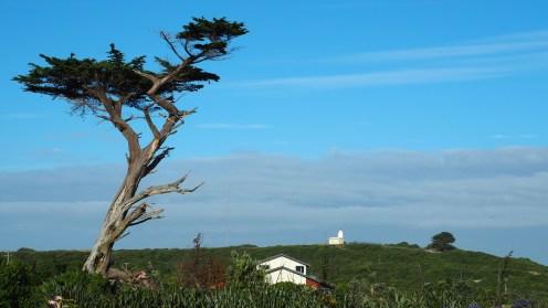 Blick zum Lighthouse vom Cottage aus