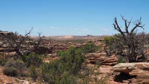 Tombstone Rock in der Ferne