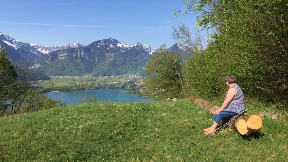 Blick-ins-Glarnerland
