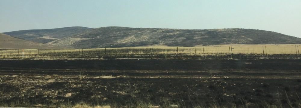 Feuer in der Nähe von Odgen in Utah