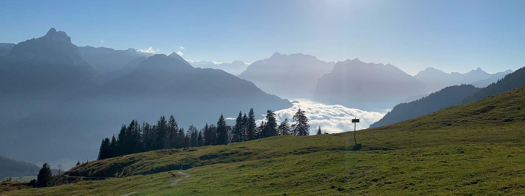 Alp Wallau