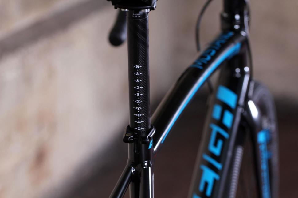 Raleigh Mustang Elite - seat post detail.jpg