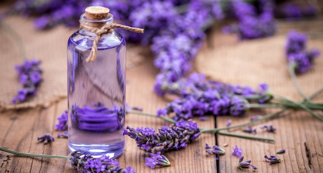 health & beauty benefits of lavender essential oil