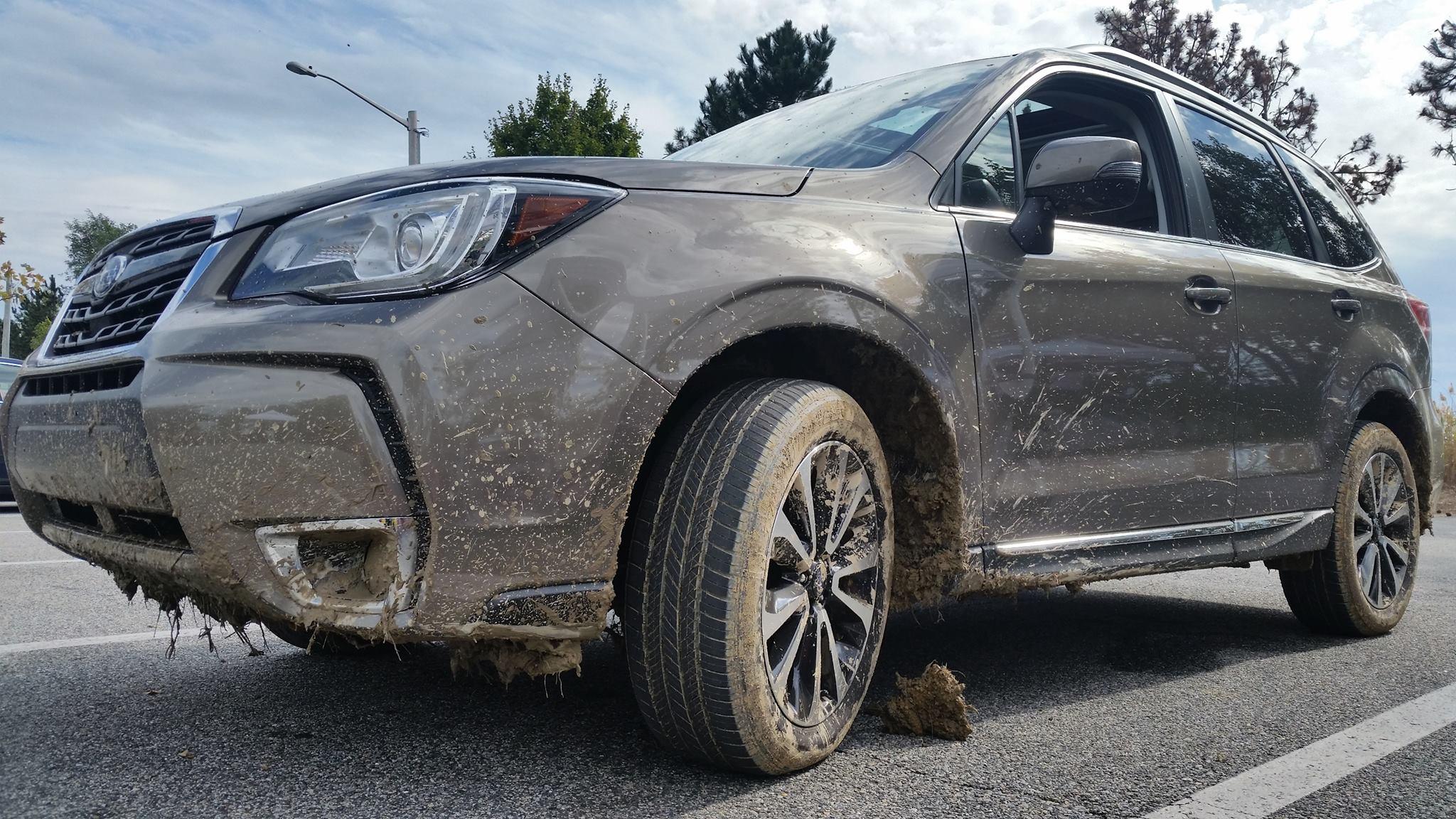 2017 Subaru Forester XT Gone Muddin'