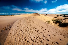 Footsteps in the dunes of 'Mungo National Park' in the outback of NSW, Australia.